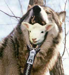 [Image: sheep-in-wolfs-clothing.jpeg]
